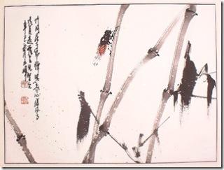 cicada  Chinese