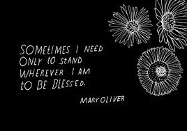 aa Mary Oliver